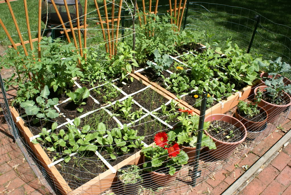 12 Inspiring Square Foot Gardening Plans-Ideas For Plant ... on Square Patio Designs  id=71041