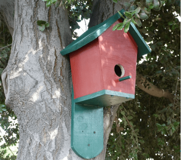 11 Cool Bluebird House Plans To Attract Them To Yard     The Self     Build a Pitched Roof Bluebird House