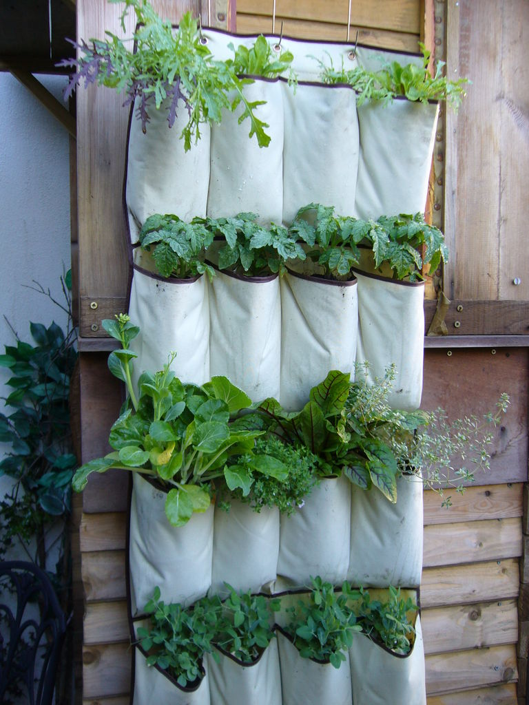 23 Cool DIY Wall Planter Ideas For Vertical Gardens The Self Sufficient Living