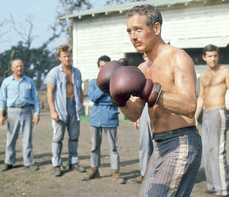 cool hand luke boxing