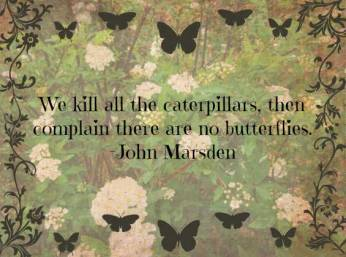 amazing-butterfly-quotes-pictures-4-3f8027be