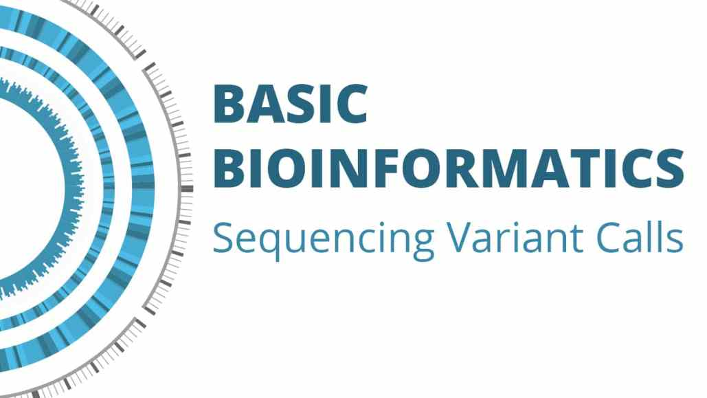 Basic Bioinformatics: Sequencing Variant Calls