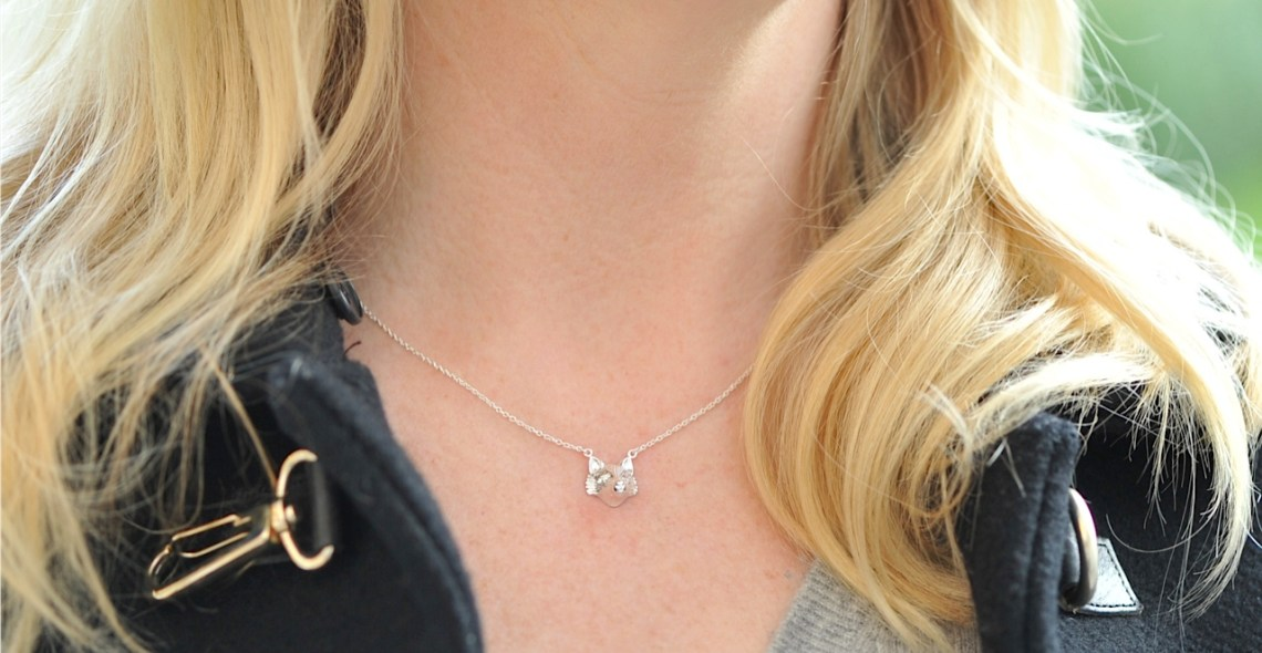 Aspire silver fox necklace