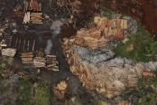 Sawmills that process illegally logged trees from the Amazon rainforest are seen near Rio Pardo, in the district of Porto Velho, Rondonia State, Brazil, September 3, 2015. REUTERS/Nacho Doce