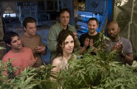 the-series-philosopher-weeds-5