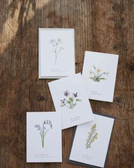annie brougham spring card set