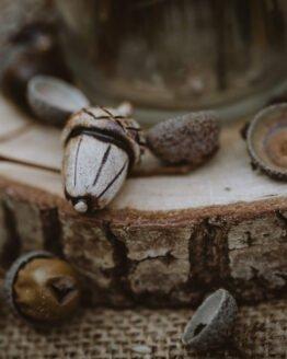 ceramic acorn main