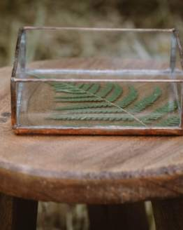 fern jewellery dish lifestyle