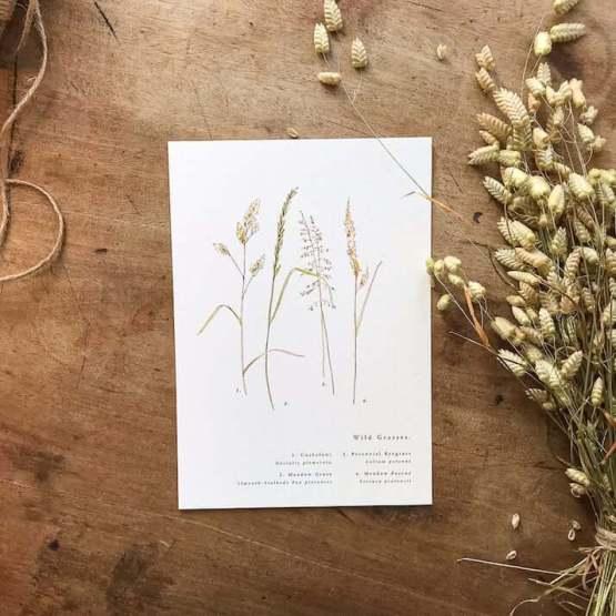 meadow grasses print