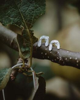 sycamore earrings main