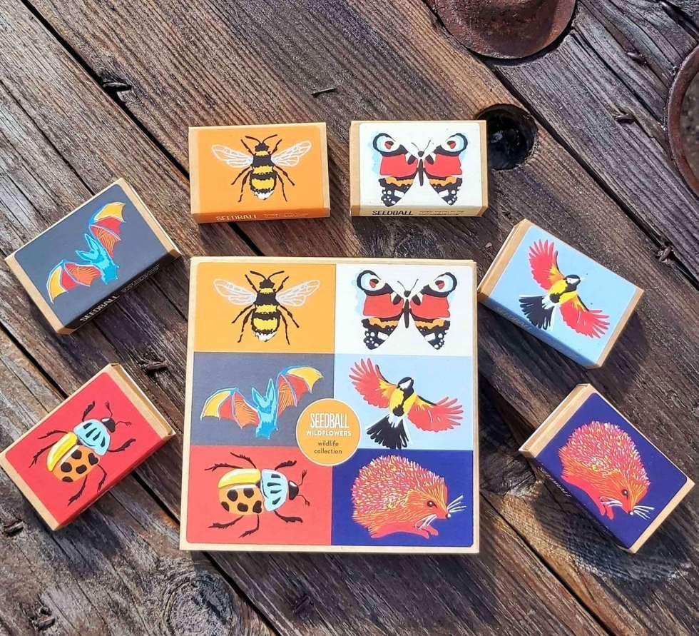 wildlife collection seedball gift box