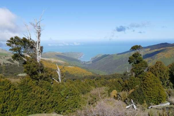 Hinewai Reserve from summit to sea ki uta ki tai