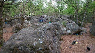 The Canche aux Merciers area of Fontainebleau forest.