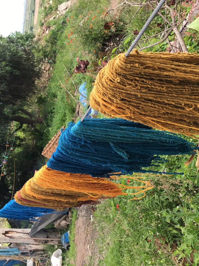 Yarns dyed various shades of blue and yellow hangs to dry on a washing line.