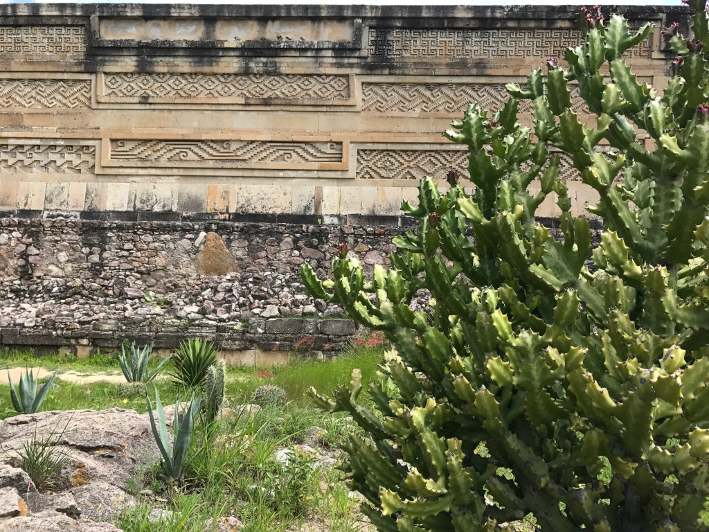 A stone wall at an archeological site, with cactus bush in the foreground.  The wall has been carved in a variety of different geometric patterns, similar to those used in the tapetes.