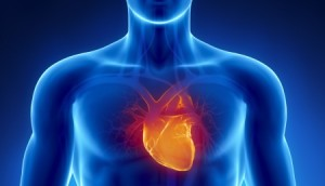 SGEM#88: Shock Through the Heart (Ottawa Aggressive Atrial Fibrillation Protocol)