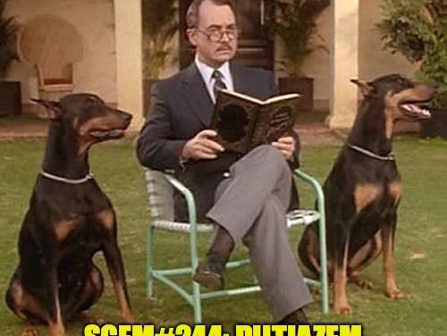 SGEM Memes #244