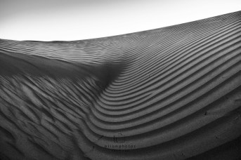 Wahiba Sands by Sunil S Rao - Prismphotos