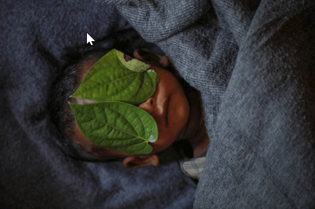 Betel leaves cover the face of 11-month-old Rohingya refugee Abdul Aziz whose wrapped body lay in his family shelter after he died battling high fever and cough at the Balukhali refugee camp near Cox's Bazar, Bangladesh (Part of Reuters series that won Pulitzer for feature photography)