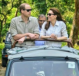 Prince William, Duchess Catherine appalled at deaths of animals in KNP