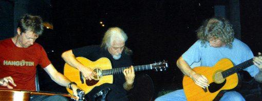 rod poole | jim mcauley | nels cline | acoustic guitar trio | vignes | long song records