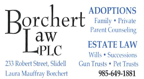 Laura Mauffray Borchert - Professional Law Corporation
