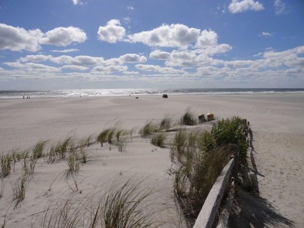 The Wildwoods Beach Information