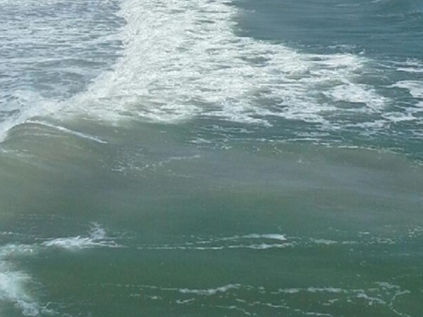 Beware: Elevated Rip Current Warnings This Week