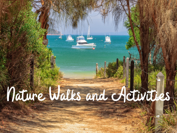 How To Connect with Nature Down the Shore
