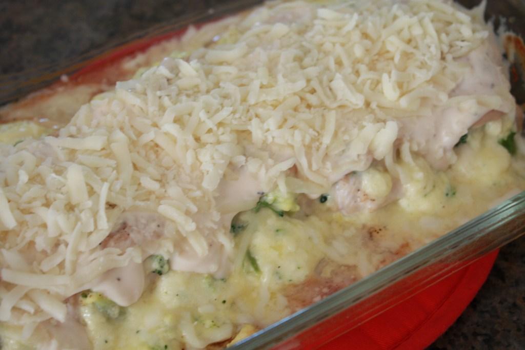 Ultimate Chicken Broccoli Alfredo Rollups
