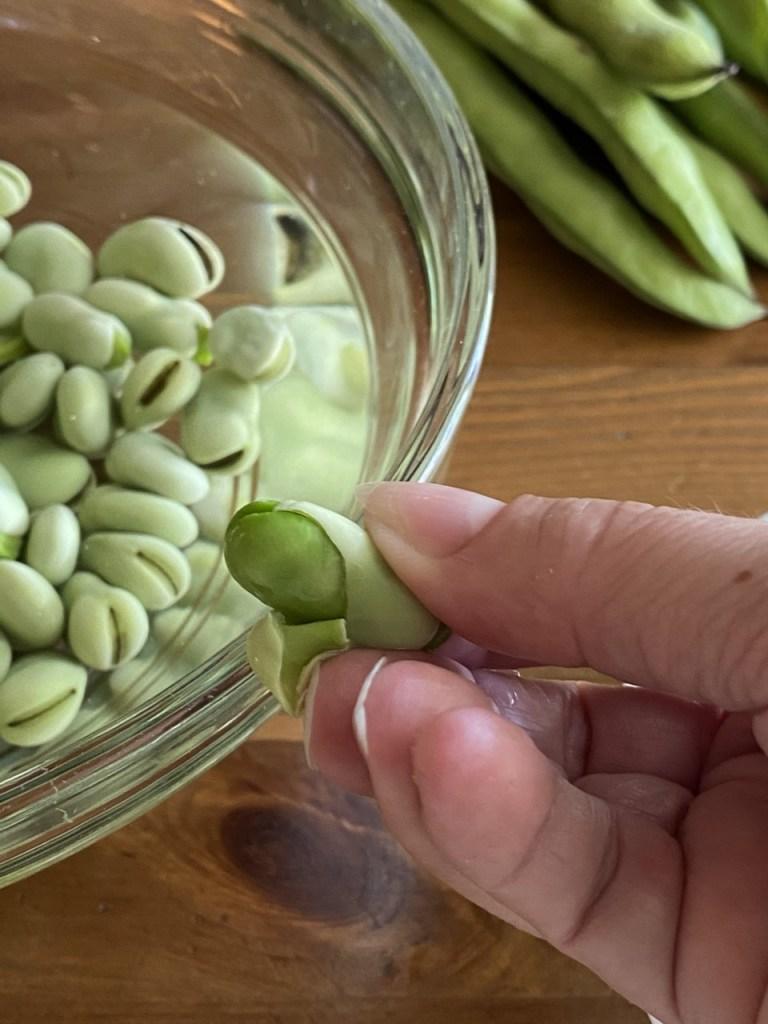 Peel skin off each fava bean