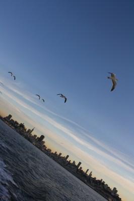 Leaving San Fran for Alcatraz...