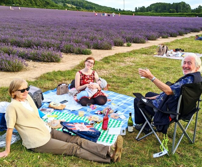 enjoying a family picnic in the lavender fields at castle farm kent review
