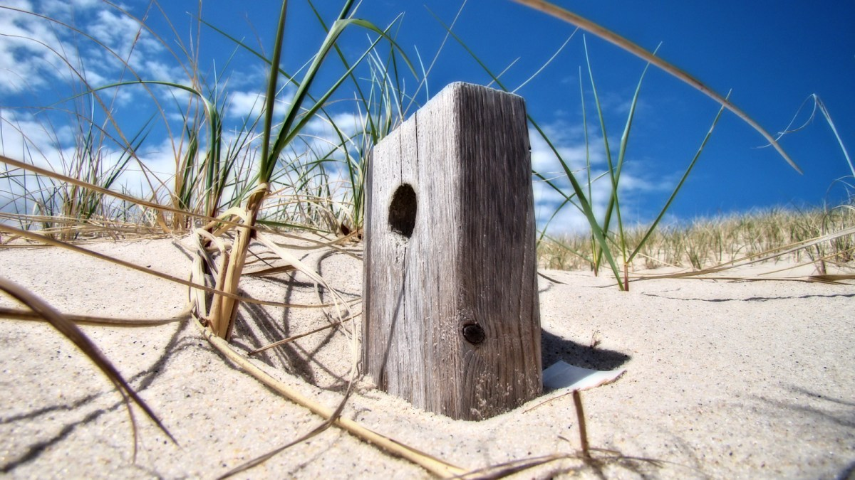 A piece of wood is facing the sun and the clouds behind it are engulfing a light blue sky. Sandy Neck Sand Dunes. Cape Cod, MA