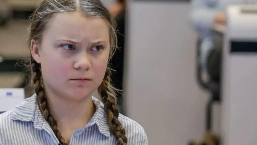Greta Thunberg FIR Case