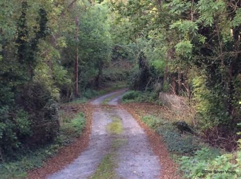 the lane leading to Rathronan Church