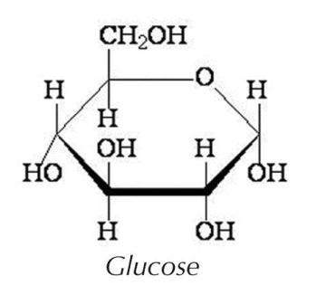 thumbnail_glucose atom.jpg