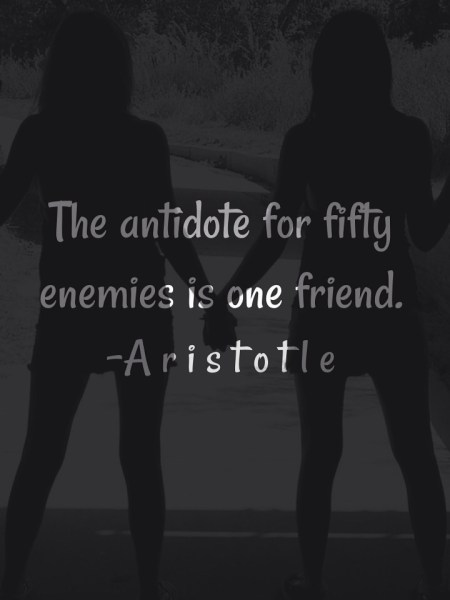 the-antidote-for-fifty-enemies-is-one-friend-3.jpg