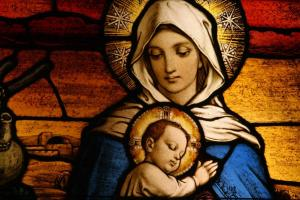 Mary is guide to Jesus