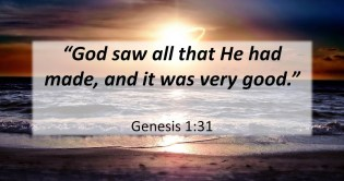 Goodness of creation