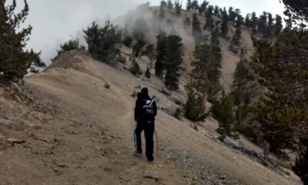 Mount Baden-Powell:  A Six Pack Of Peaks Training Hike