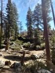 Upper Yosemite Falls Trail