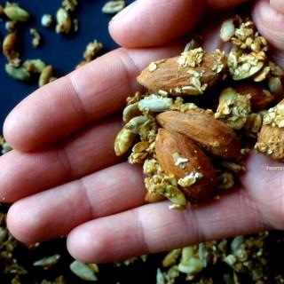granola-salada-al-eneldo-y-mostaza-6