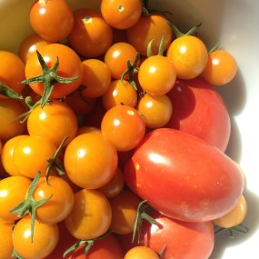 I was too depressed to take a photo at the other grocery so here's a picture of some homegrown tomatoes instead.