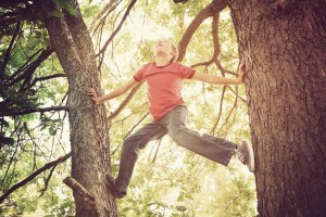 The Single Mom Blog, Letting Go - Boy Climbing a tree