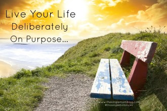 The Single Mom Blog - Live Life Deliberately On Purpose
