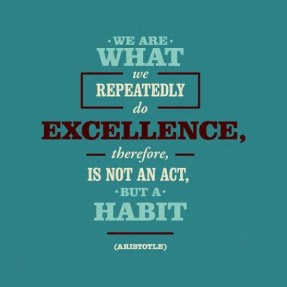 The Single Mom Blog - Accountable, Excellence is a HABIT
