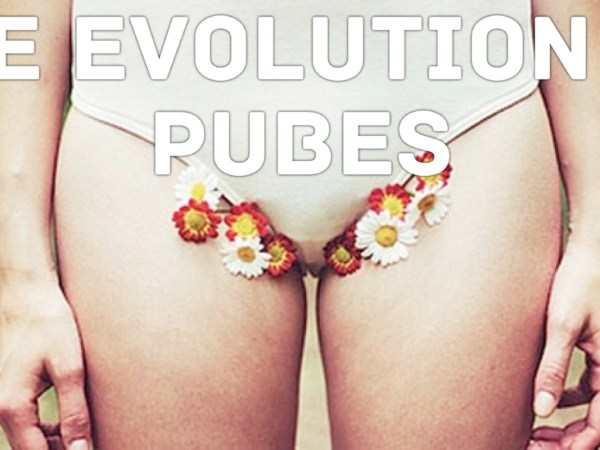 The Evolution Of Pubes