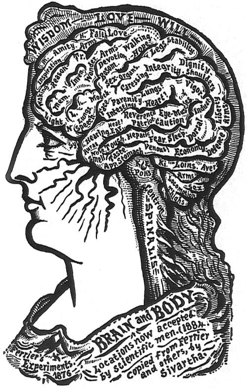 //bibliodyssey.blogspot.com/2006/11/brain-maps.html