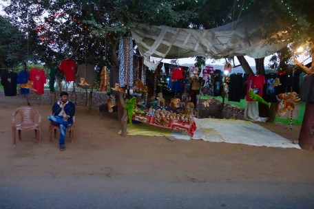 Tiger sales in Ranthambore, India